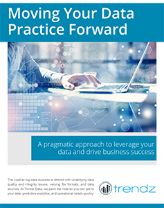 Moving Your Data Practice Forward Whitepaper - Trendz Data